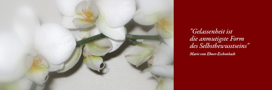 orchidee_spruch.jpg